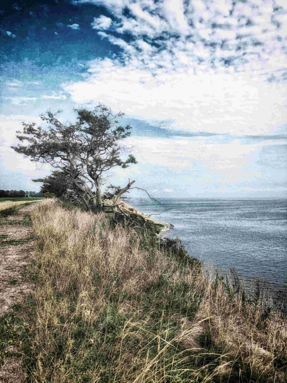 Skåne in Südschweden - Steilküste zwischen Ales Stenar und Löderup