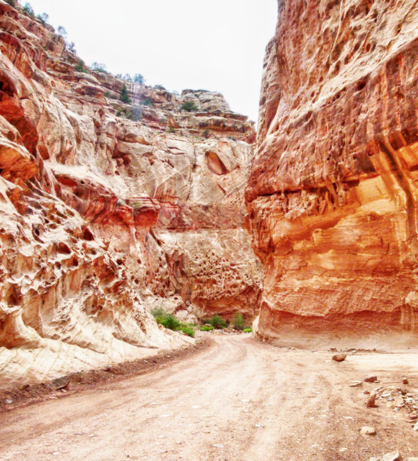 Capitol Reef National Park Slot Canyon Utah Roadtrip Alternativen