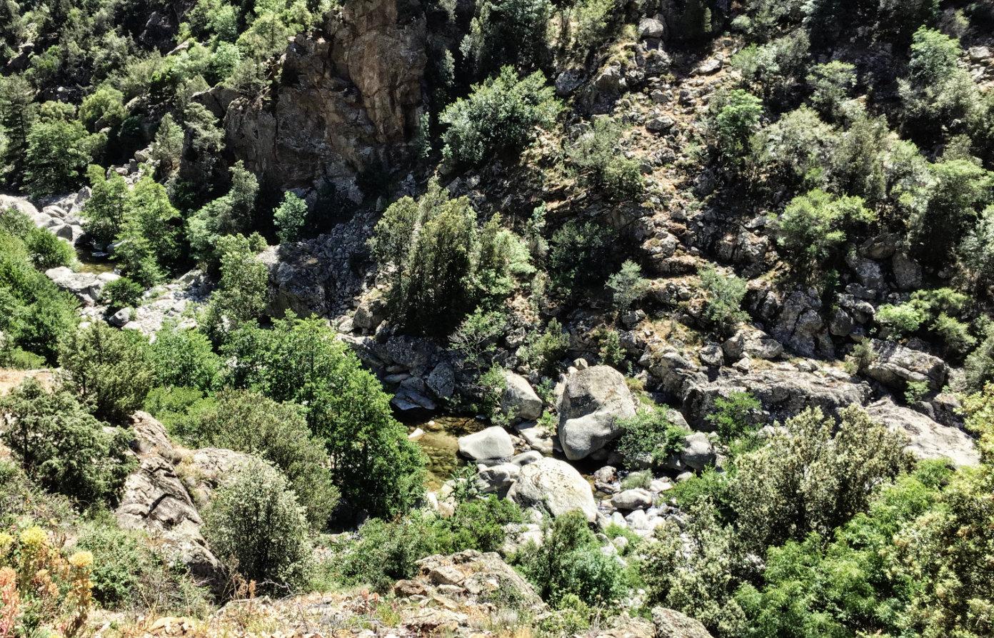 Korsika Wanderwege: Macchia und Felsschluchten bei Corte