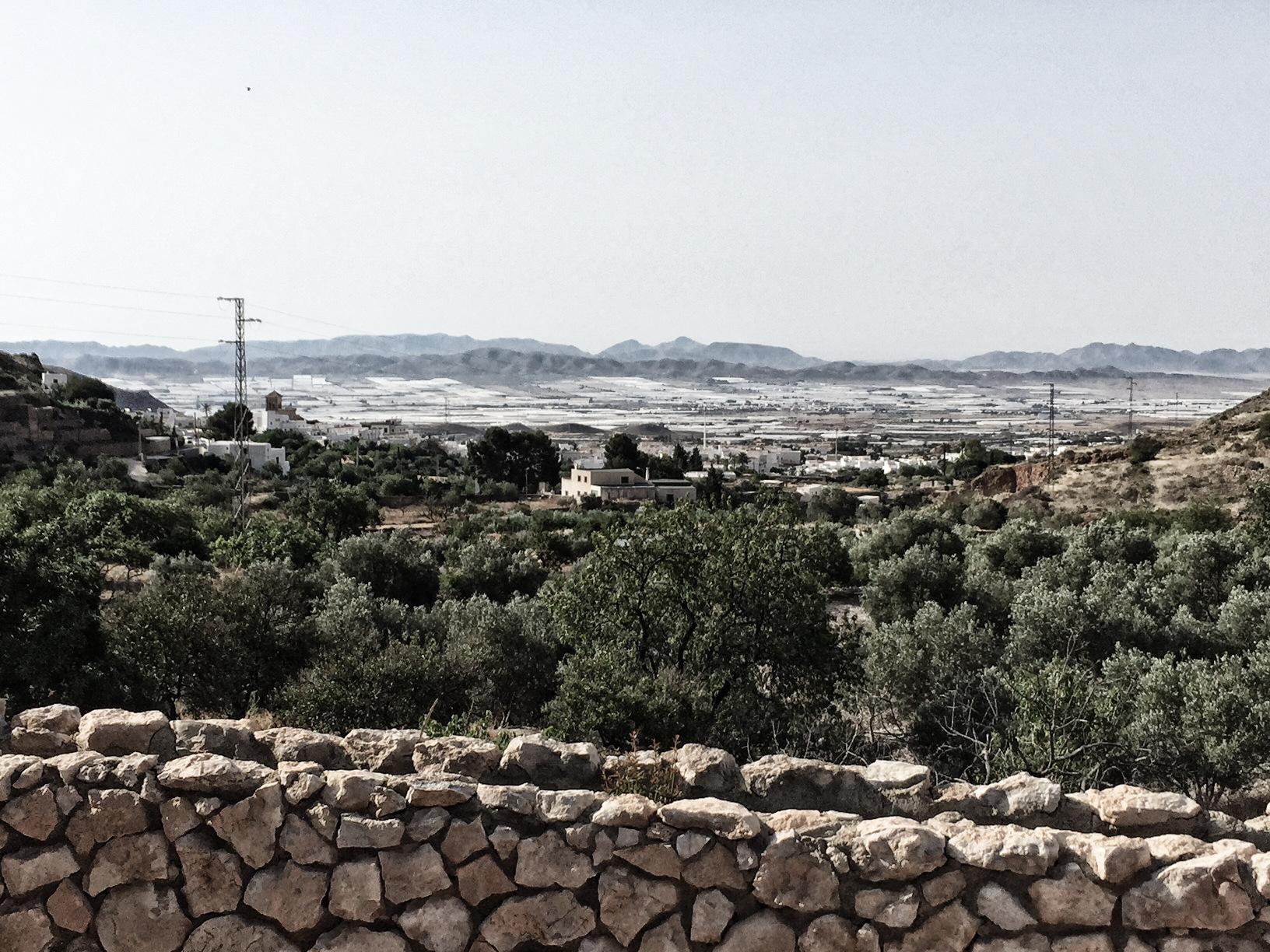 Andalusien Rundreise: Die Treibhäuser drängen immer mehr in die Landschaft um Almeria