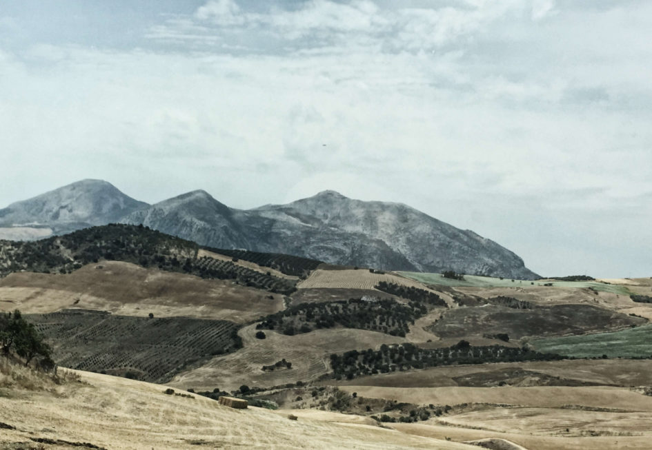 Andalusien Rundreise ins wilde Hinterland