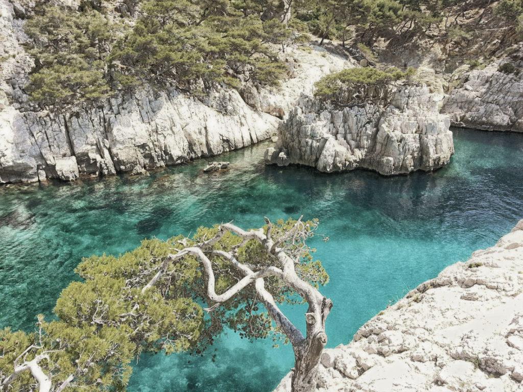 Wandern Calanques und  Cote Bleue